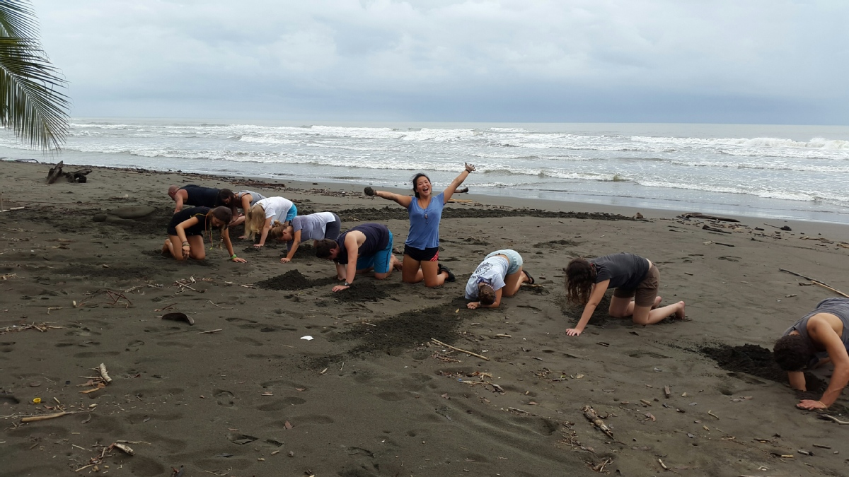 volunteer abroad opportunities holiday families children kids animals conservation costa rica