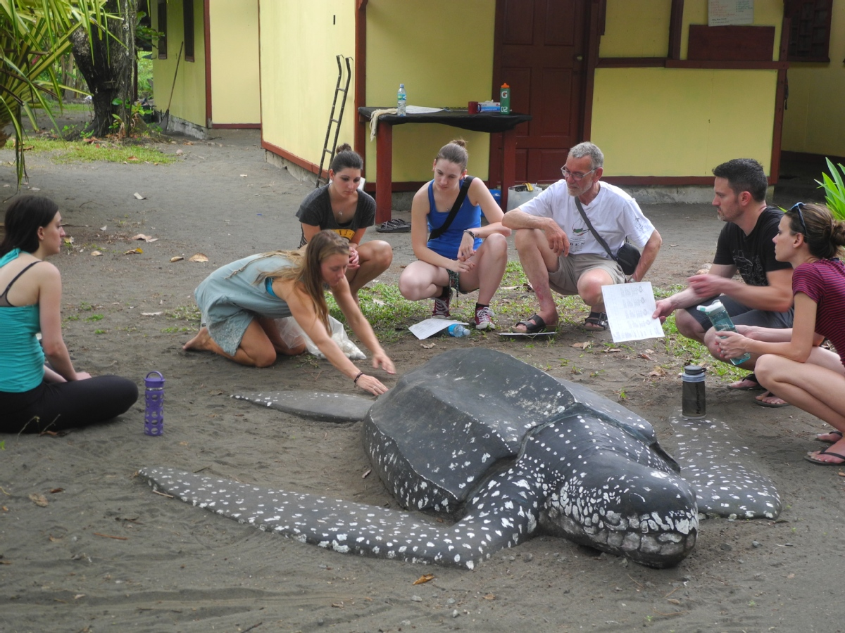 volunteer opportunities abroad holidays seniors retirees costa rica nature animals environment conservation
