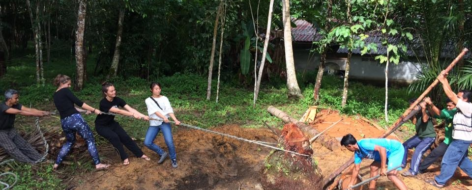 volunteer opportunities abroad holiday thailand conservation environment community development