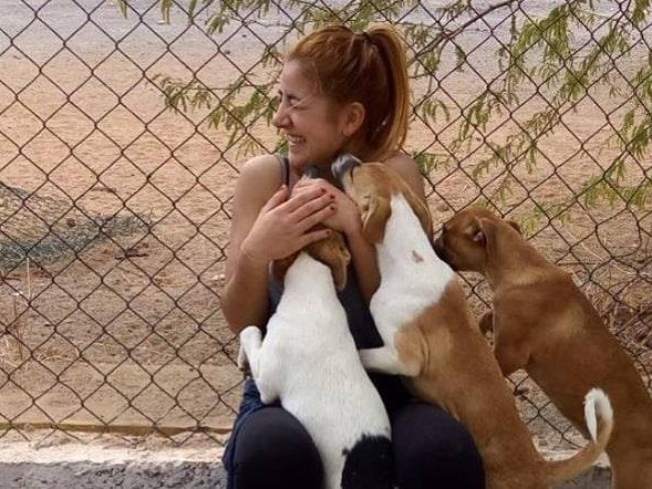 Simabo organization ngo volunteer opportunities programs projects abroad holiday cape verde africa animals dogs cats rescue