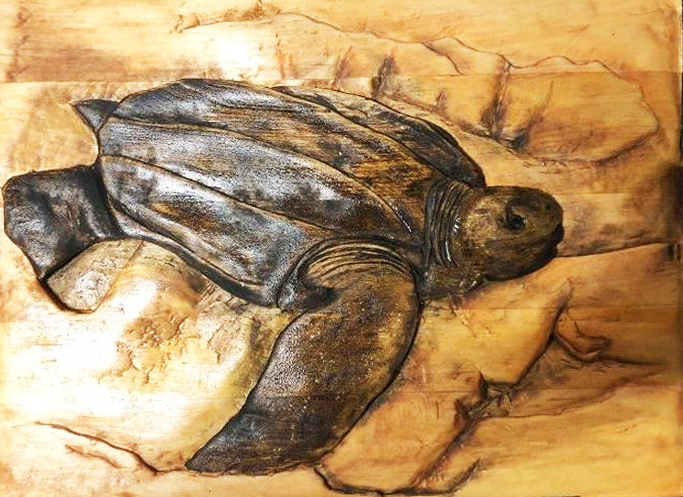 givingway mark ash turtle carving